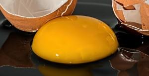 egg-943413_1920