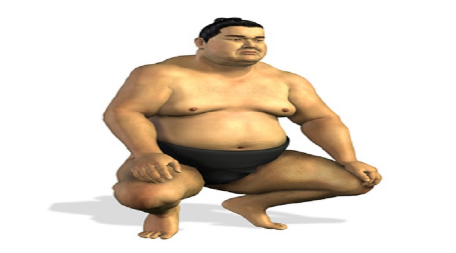 protein kohlenhydrate fett verteilung
