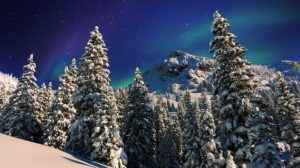 winter-1251186_640