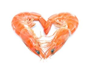 Cooked shrimps,prawns heart shape isolated on white background