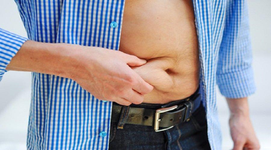 fettverbrennung ernährung