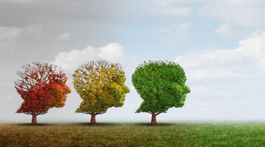 Low-Carb und Bewegung: einzeln und zusammen super fürs Gehirn